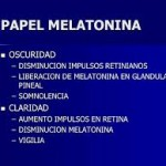 melatonina 2